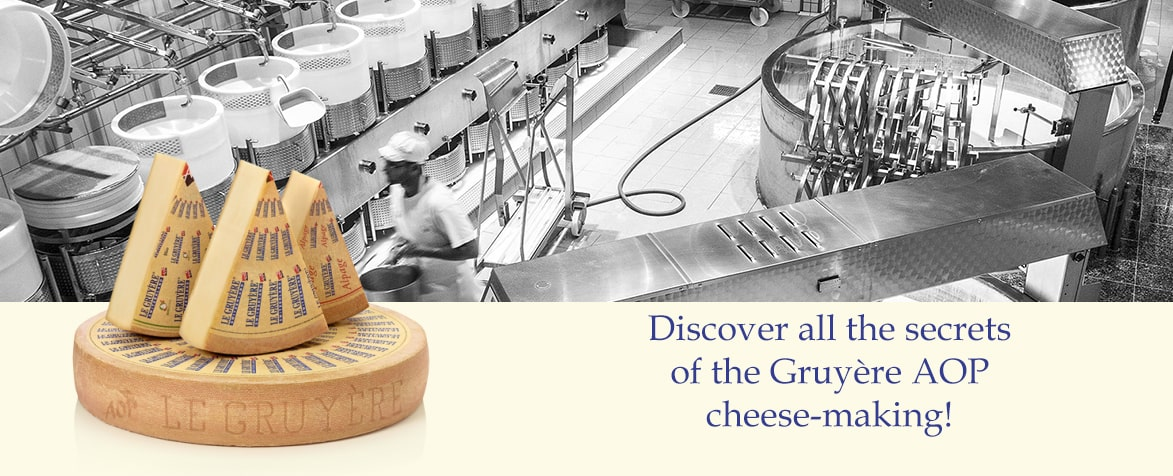Discover all the secrets of the Gruyère AOP cheese-making production